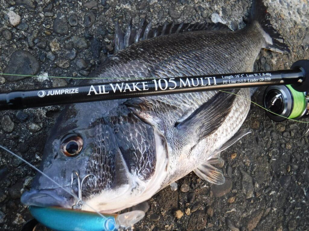 チヌ ルアチヌ ホタルイカパターン 釣り方